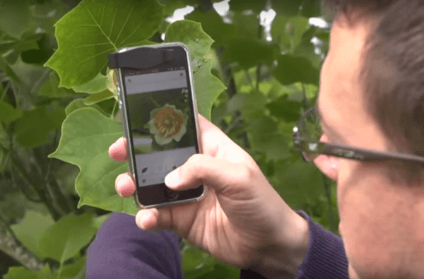 plant snap app