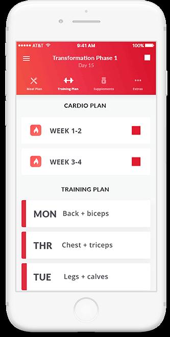 Training and Cardio